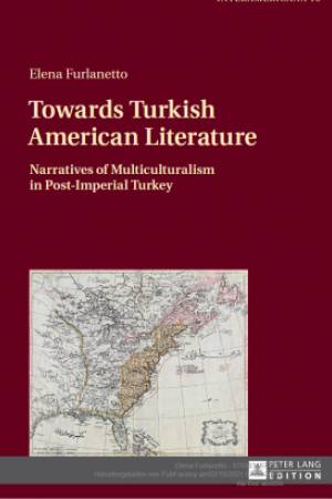 Cover Towards Turkish American Literature